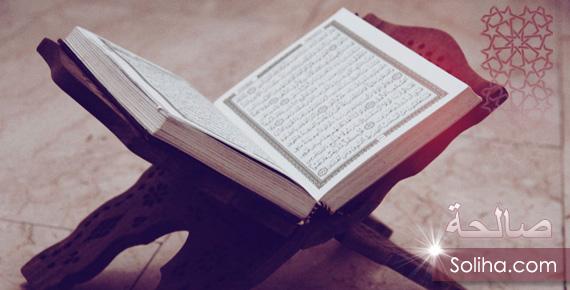 Самая прекрасная книга на свете шмитт читать